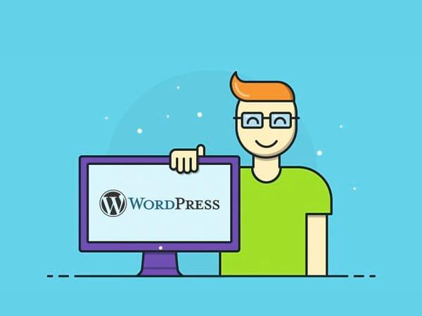 Những Con Số Thú Vị Về WordPress
