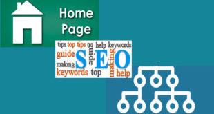 SEO trang chủ hay SEO trang con – Chọn cách seo web nào phù hợp