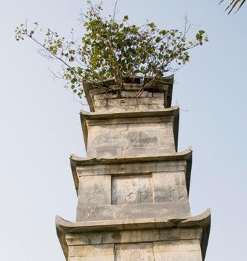 Về việc trùng tu tháp Tôn Đức ở chùa Bút Tháp